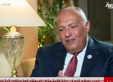 شكري: مصر لم تتخذ أي إجراء يمس مصالح الشعب السوري