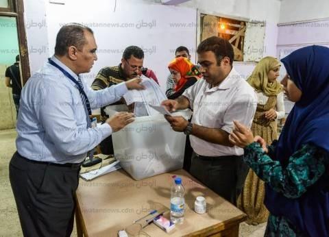 """""""في حب مصر"""" تتصدر نتائج الفرز الأولية في دمنهور"""