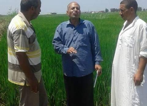 """محافظ بني سويف: الزراعة منظومة متكاملة ونسعى لـ""""زيادة القمية المضافة"""""""