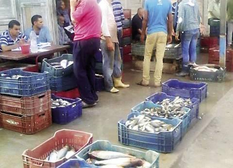 تزايد الإقبال على شراء الأسماك في رمضان.. وارتفاع أسعارها 20%