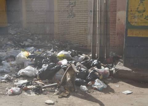 انتشار القمامة بمحيط مدرستين في المنصورة يثير غضب الأهالي
