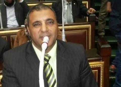 بيان من عضو بالنواب حول تدابير الحكومة لمواجهة الكيانات الإرهابية