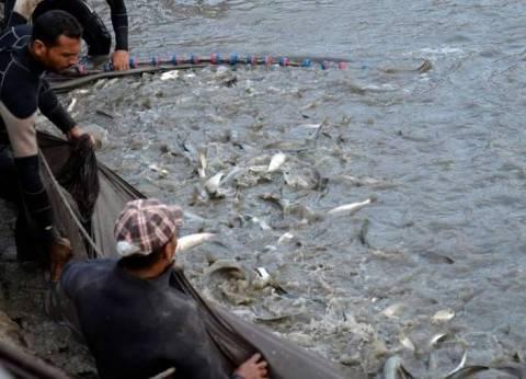مؤتمر الاستزراع السمكي يوصي بمخاطبة أجهزة الدولة لتعميق قنوات الأسماك