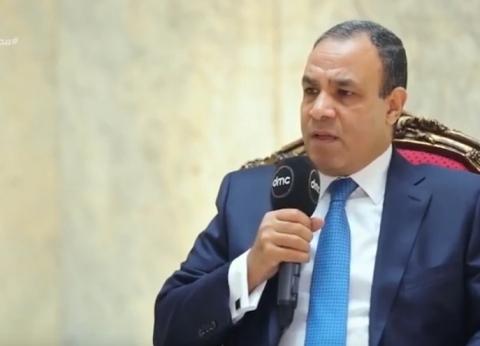 بدر عبدالعاطي: لا وجود للإخوان أمام لجان الاستفتاء على الدستور