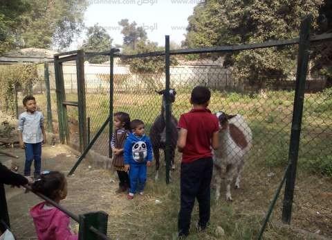 حديقة الحيوان بالإسكندرية تستقبل الزوار في عيد شم النسيم