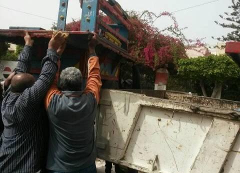 حملة بحي شرق الإسكندرية لإزالة التعديات والإشغالات
