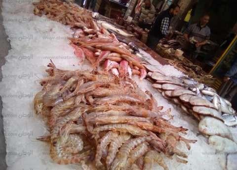 أسعار بيع الأسماك بسوق العبور.. والبلطي بـ29 جنيها