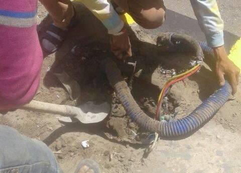 حي شرق بالإسكندرية يستكمل أعمال صيانة الكهرباء