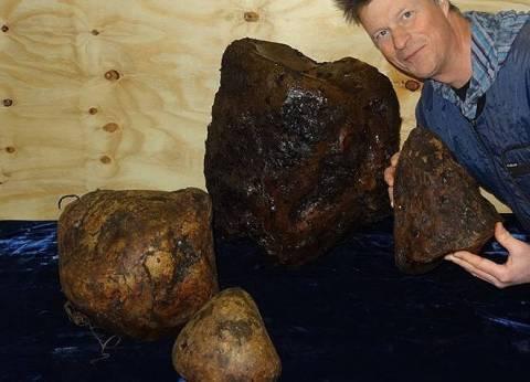يستخرج من قيء الحيتان.. ما هو العنبر الذي يستخدم في صناعة أغلى العطور
