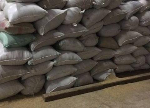"""""""تموين الفيوم"""": توريد 128 ألف طن من محصول القمح لـ15 موقع استلام"""