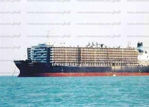 ميناء غرب بورسعيد يستقبل 7500 رأس ماشية حية و2700 طن رخام