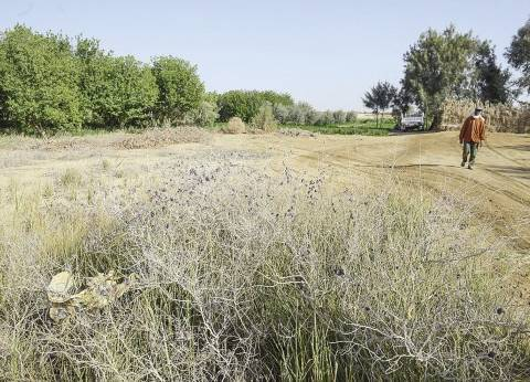 «الريف المصرى»: طرح 393 قطعة أرض فى «غرب المنيا» و«المغرة» للانتفاع