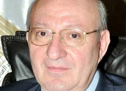 سفير مصر بالرياض: السعودية وفرت عربات إسعاف أمام اللجان