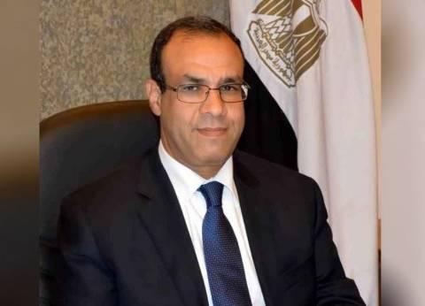 سفير مصر بألمانيا يدلي بصوته في الاستفتاء على التعديلات الدستورية
