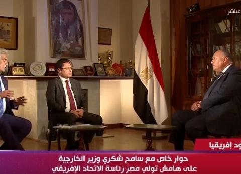 وزير الخارجية:ثورة 30 يونيو تُعد قمة الديمقراطية