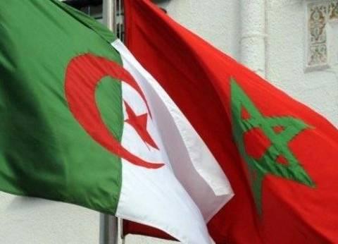 الجزائر تشير بأصبع الاتهام للمغرب في تدفق المخدرات عليها
