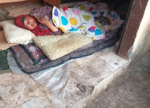 محافظ المنوفية يوجه بإنقاذ سيده بلا مأوي ويأمر بمتابعة حالتها الصحية