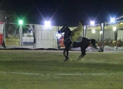 """""""السياحة"""" ترعى الدورة الـ22 لمهرجان الشرقية للخيول العربية"""