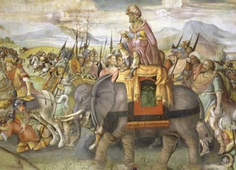 حواديت الجبرتي| فيل في «قصر العيني» يبهر المصريين: قدموا له القصب