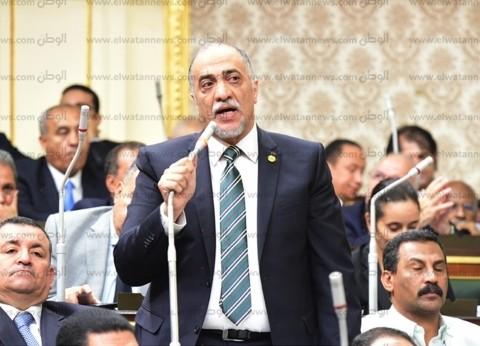 """رئيس """"دعم مصر"""": مشاركة المصريين في الاستفتاء رصاصة بقلب كل خائن"""