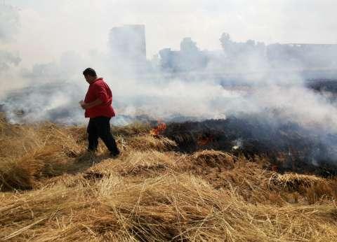 الغربية: «الأوقاف» تغطى فشل البيئة والزراعة والمحليات