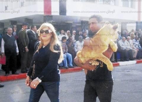 حصان وأسد فى العيد القومى لأسوان