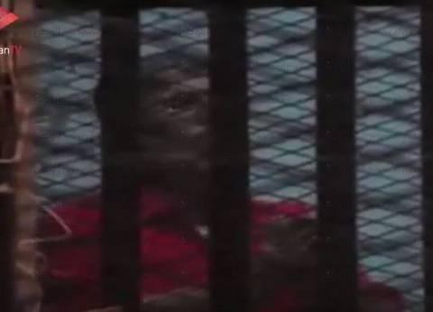 """تأجيل محاكمة المعزول و21 آخرين في """"التخابر مع حماس"""" للغد"""