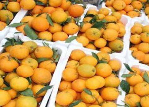 استقرار أسعار الفاكهة في سوق العبور للجملة.. والبرتقال بـ4 جنيهات
