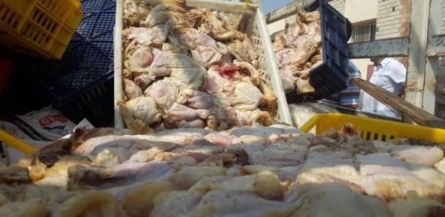 """""""شؤون البيئة"""" بالمنصورة يرفض إعدام 6 أطنان دجاج فاسد بالحرق أو الدفن"""