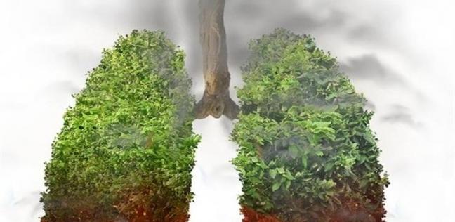 حرائق غير مسبوقة في غابات الأمازون