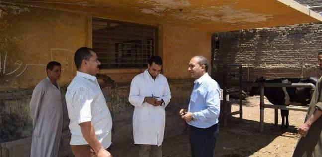 إعادة فتح سوق الماشية بأبو قرقاص في المنيا.. الخميس المقبل