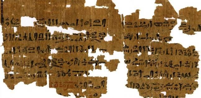 علماء دنماركيون: استخدام القمح فى تحديد الحمل يرجع للمصريين القدماء