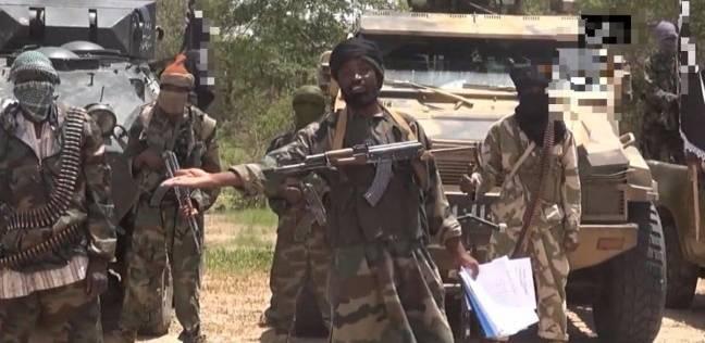 مقتل 33 إرهابيا من بوكو حرام في حوض بحيرة تشاد بالنيجر