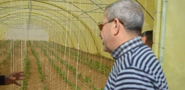 رئيس مدينة القصير يتابع مشروع حماية الشواطئ