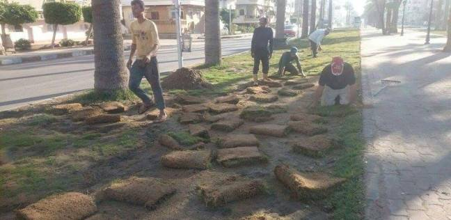 مجلس مدينة رأس البر يواصل أعمال زراعة النجيل وتنسيق الحدائق