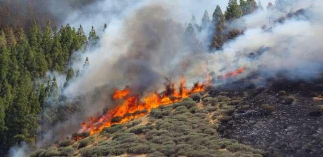 """""""كارثة بيئية"""".. حريق محمية طبيعية في اليونان بطول 12 كيلومترا"""