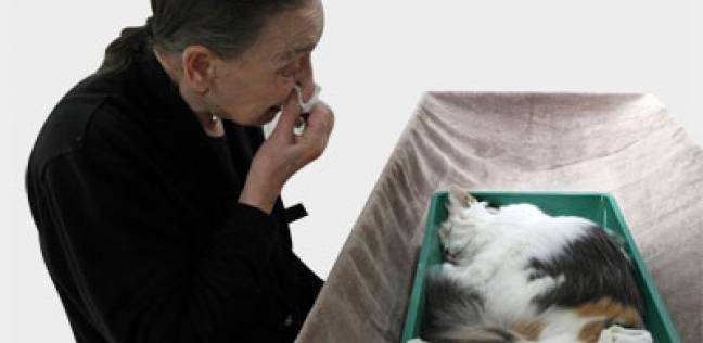 في تايلاند مراسم جنائزية بوذية للحيوانات الأليفة أبرزها الكلبة واه واه