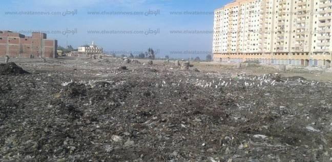 برلماني: جمع القمامة مسؤولية الدولة