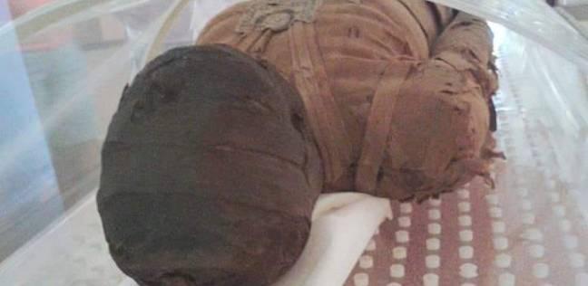 ننشر صور قطع أثرية مصرية بمتحف البرازيل المحترق