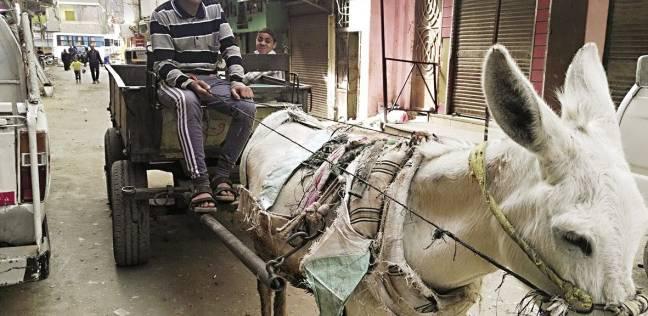 محافظة القاهرة تبدأ التشغيل التجريبى لشراء القمامة