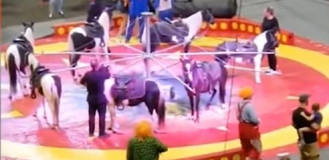بالفيديو| جمل غاضب يهاجم زائري سيرك ويصيب 7 أشخاص