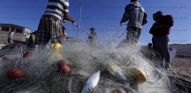 المطالبة بتكثيف الدوريات ببحيرة المنزلة وتطهيرها من العصابات في دمياط