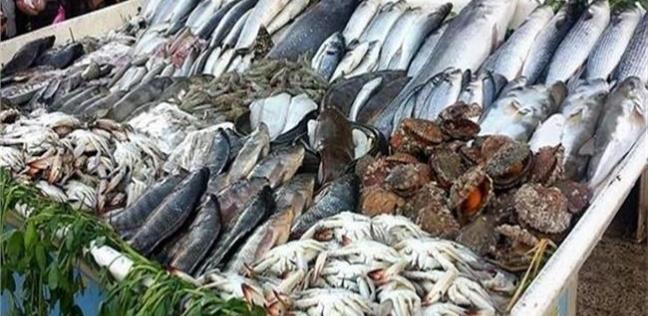 المحافظات   بالأرقام  رغم الركود.. ارتفاع أسعار الأسماك في الإسكندرية