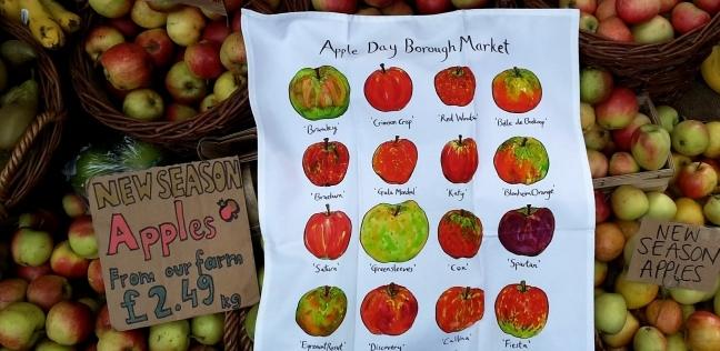 يحيى السني: التفاح المستورد يقاوم الدولار الجمركي.. ويتراجع لـ13 جنيها