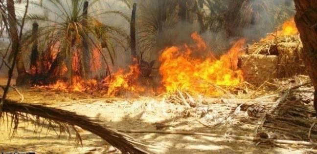 السيطرة على حريق نشب بحظيرة مواشي نتيجة ماس كهربائي في الفيوم