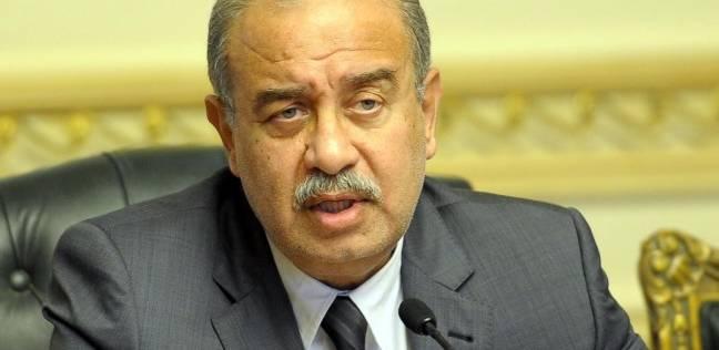 """""""إسماعيل"""" يستعرض عوامل جذب الاستثمارات وتحقيق أهداف التنمية المستدامة"""