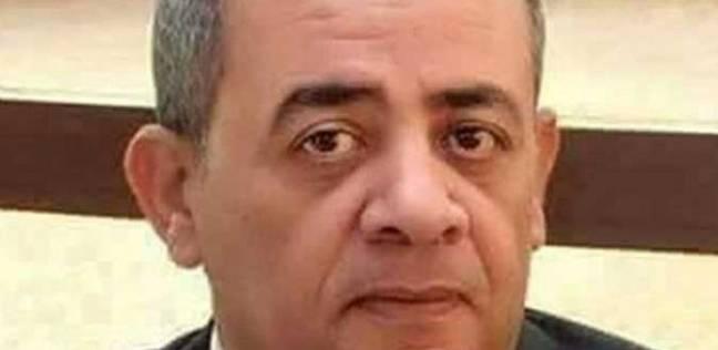 نادي قضاة مجلس الدولة: راعينا أعداد القضاة وفقا للجان الانتخابية