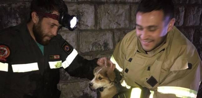 الكلب بعد إنقاذه مع رجال الدفاع المدني