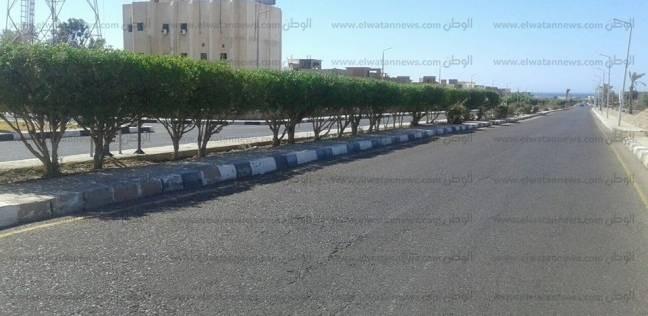 رفع مخلفات أشجار من مدرسة الصوالح بالإسكندرية
