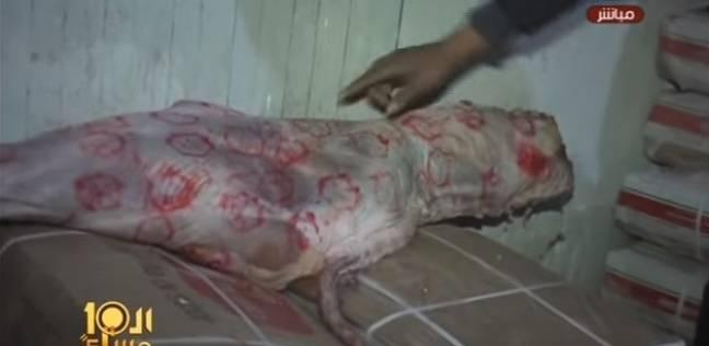 بالفيديو  رصد أول حالة لتزوير أختام اللحوم الجديدة في الإسماعيلية